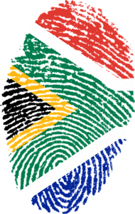 trading south africa